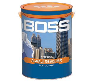 BOSS EXTERIOR ALKALL RESISTER